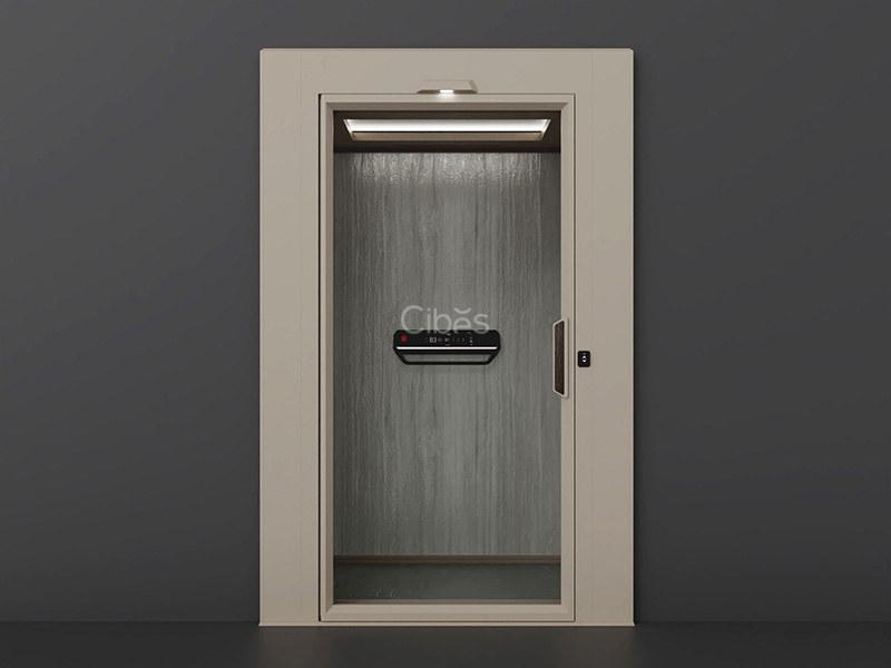 时尚款轿厢家用电梯